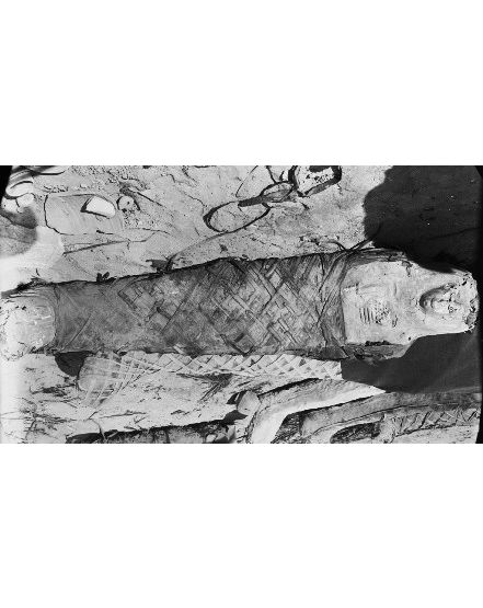 Mummies from Hawara. Photo from the Petrie Museum archive.