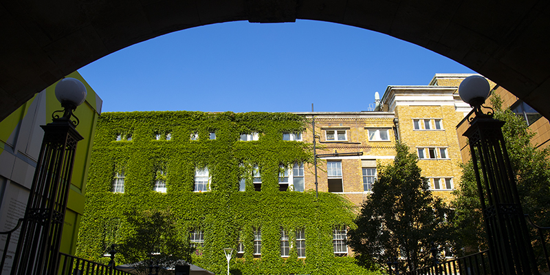 UCL through an arch