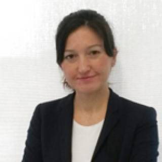 UCL Centre for Artificial Intelligence: Emine Yilmaz