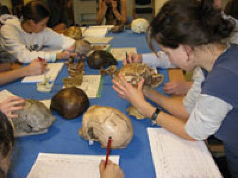 Taster Day at UCL Anthropology