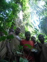 Baka from Mang-Kako map sacred moabi tree 2007