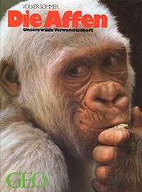 Sommer_1989_Die Affen