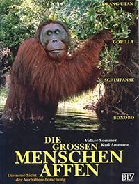 Sommer_Ammann_1998_Die Grossen Menschen Affen