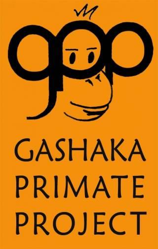 illu_gpp_logo