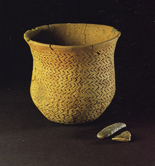 Beaker pottery (Image copyright: The Trustees of the Natural History Museum, London)