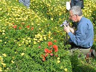 Gordon Hillman photographing wild flowers during the IWGP excursion near Girona, Spain (2004)