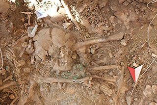 Radical death and early state formation