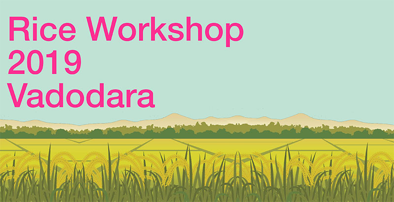 Rice Workshop being held in India (March 2019)