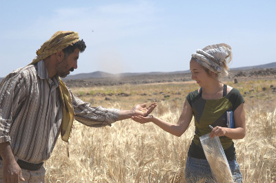 Ali Shakaiteer and Dr Amaia Arranz-Otaegui sampling cereals in the area where the bread was discovered (Image courtesy of Joe Roe)