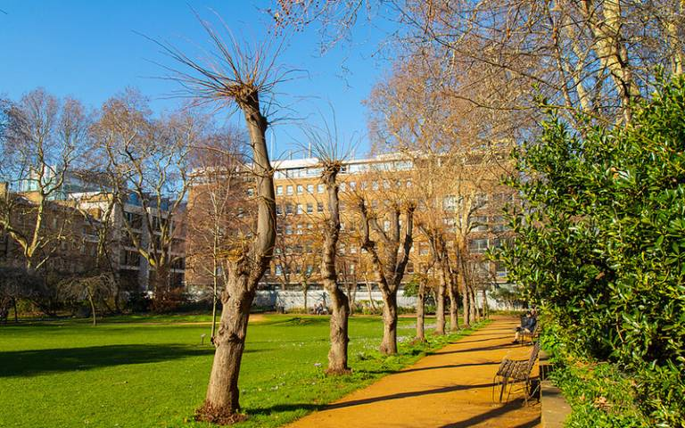 Gordon Square gardens © UCL Digital Media