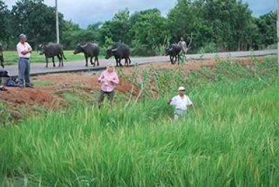Alison Weisskopf on fieldwork in Orissa, 2010