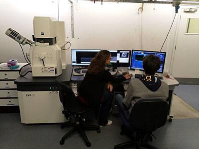 Carl Zeiss EVO 25 scanning electron microscope (SEM)