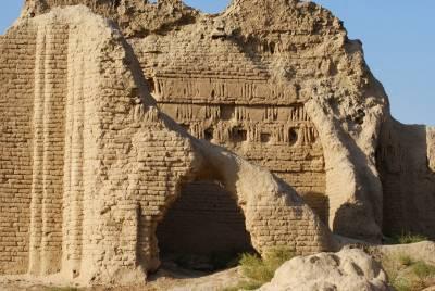Shahriyar Ark walls