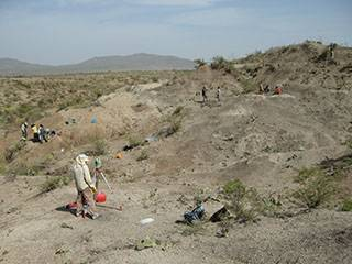 Excavations in the Middle Pleistocene of Mieso (Ethiopia)