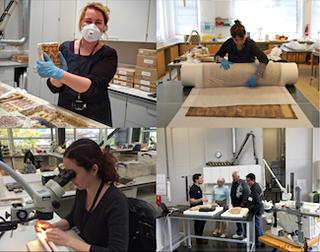 Conservation internships at the British Museum