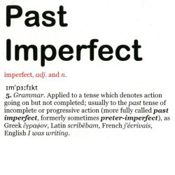 Past Imperfect, dictionary definition