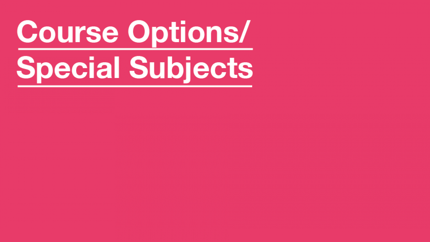 MA Course Options/Special Subject