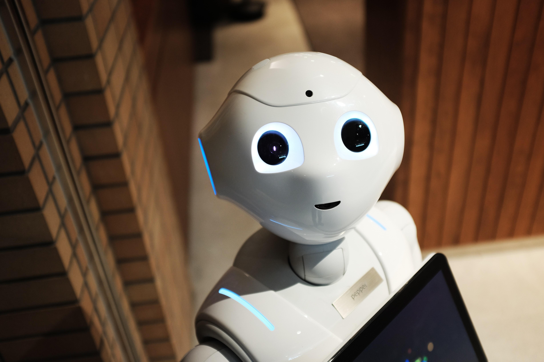 Robot looking at camera