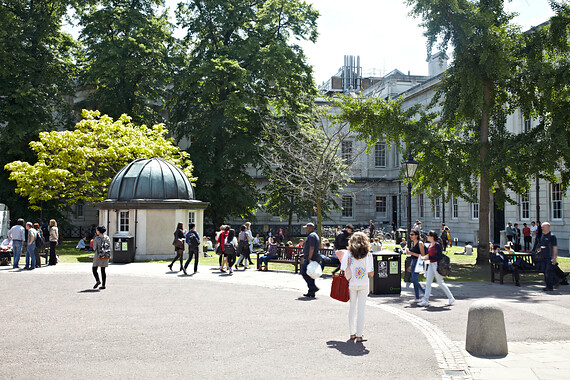 Front quad in summer