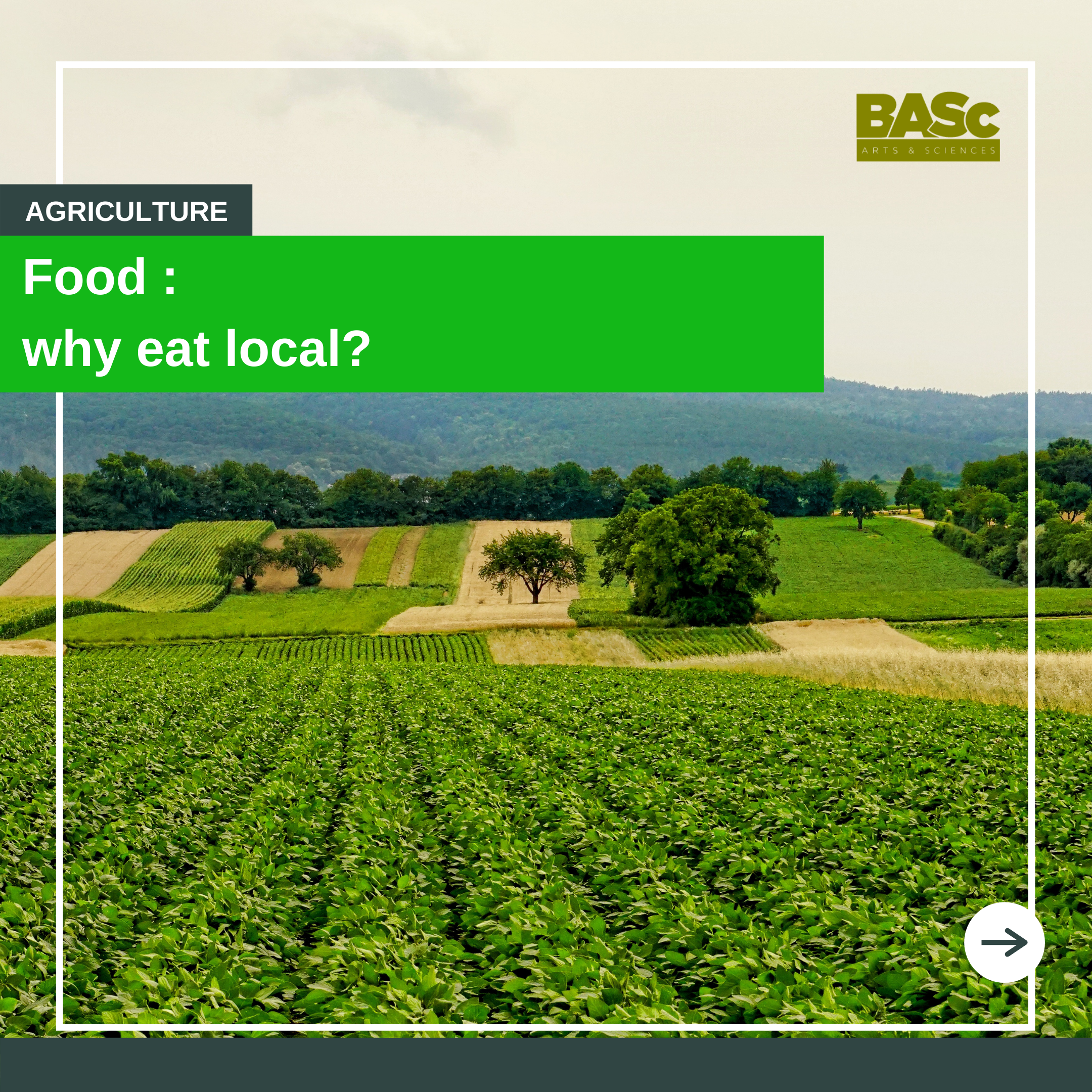Why eat local first image