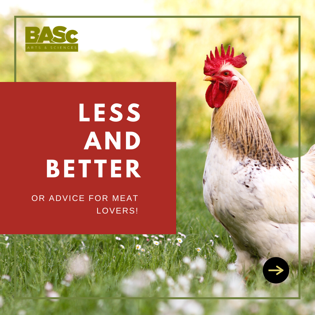 Meat: Less and Better or Advice for Meat-Lovers