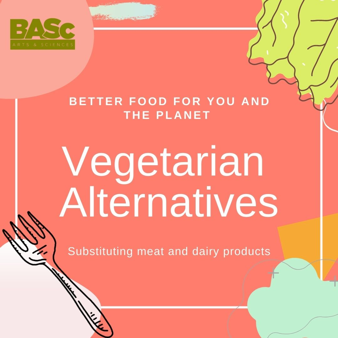 Vegetarian alternatives to avoid meat and dairy