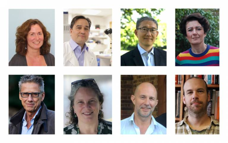 Eight Senior UCL Researchers