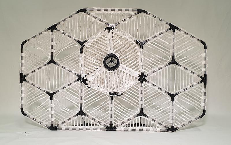 Heliotropic Moire Patterns Zeynep Cakmak Ergin