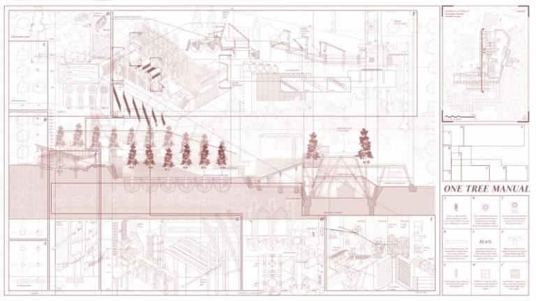 'One Tree Manual: Towards a Better Timber Architecture' by Tengku (Sharil) Bin Tengku Abdul Kadir