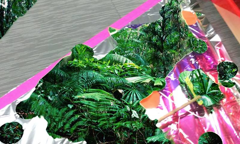 A sheet of foil with digital photographs of ferns and plants coming through.