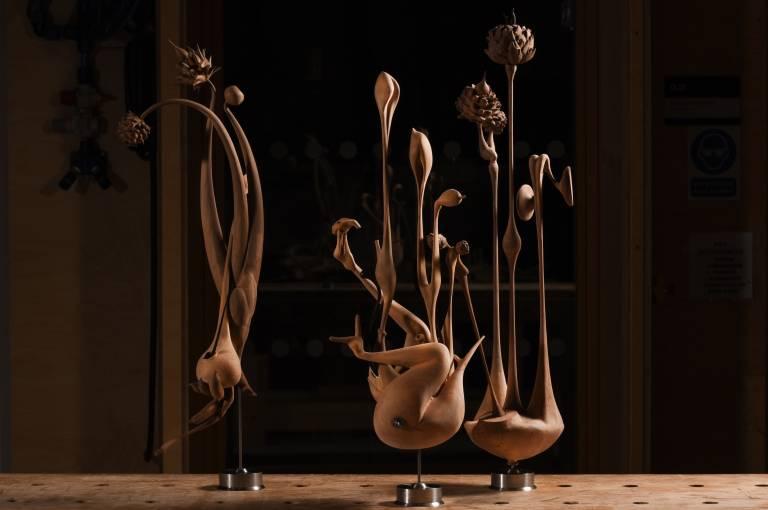 Garden objects: cardoon, garden tulip, globe artichoke