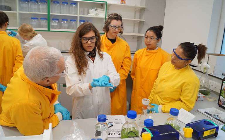 Co-lab Bioremediation Workshop. Portela-Torres, Paloma. 2016. London.