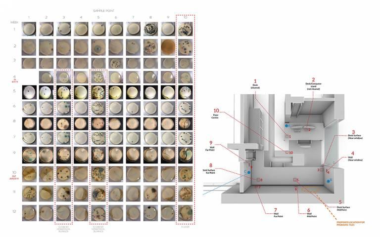 Richard Beckett - Probiotic Architecture
