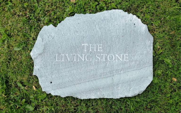 The living stone exhibition