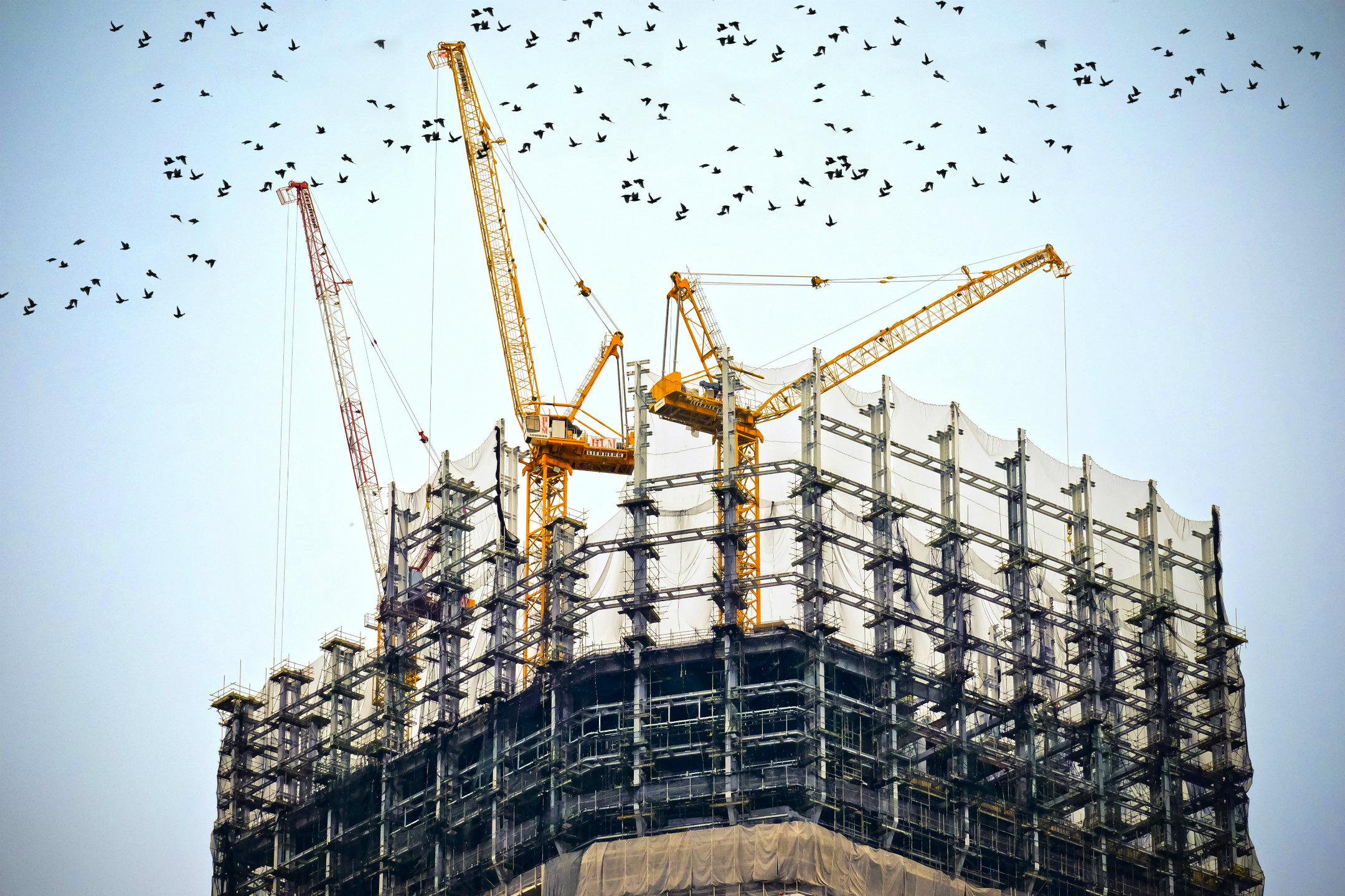 Skills shortage in construction post-Brexit