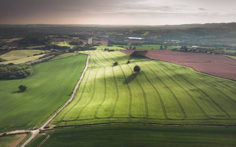 Fields and land