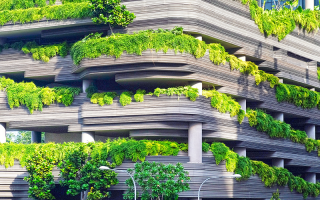 Plants shading building