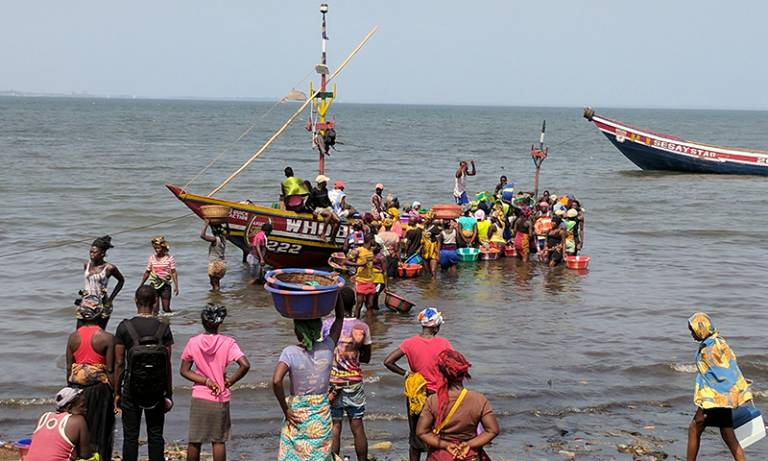 Sierra Leone Freetown Gender Livelihoods