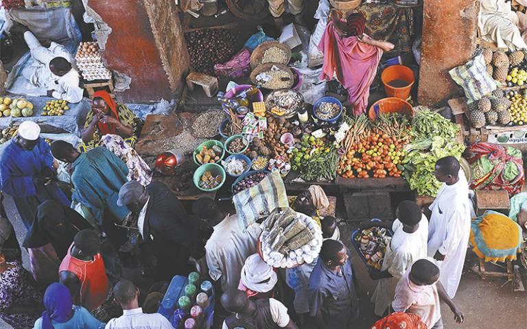 integrating food into urban planning
