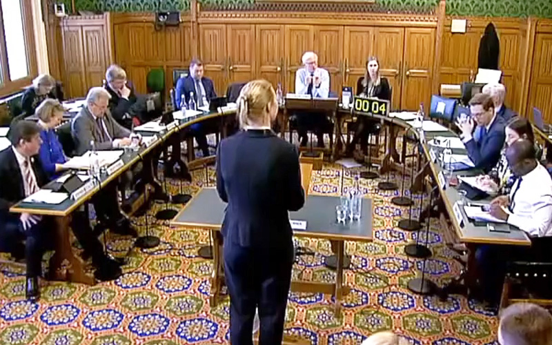 Dr Gesche Huebner addresses the UK Parliament's Science and Technology Select Committee
