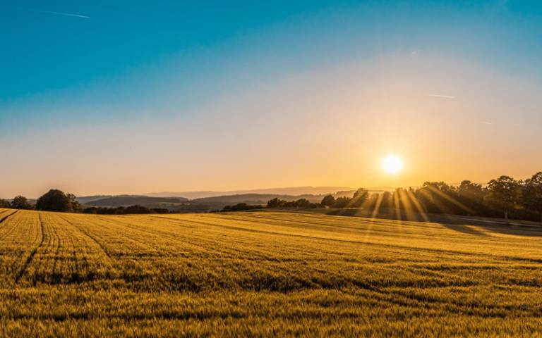 Sun rising over arable field - Photo by Federico Respini on Unsplash