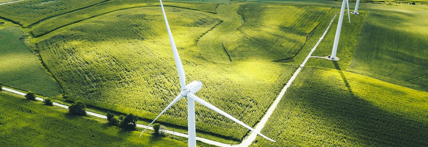 Wind turbines in crop feilds