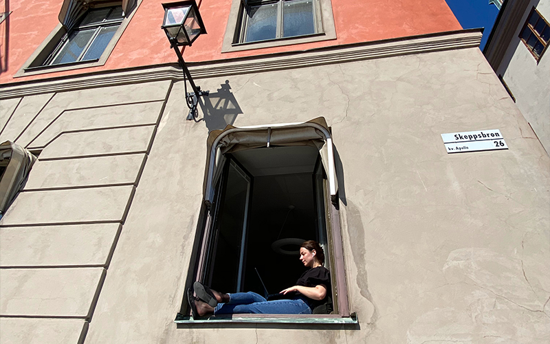 woman sits in the window working on laptop
