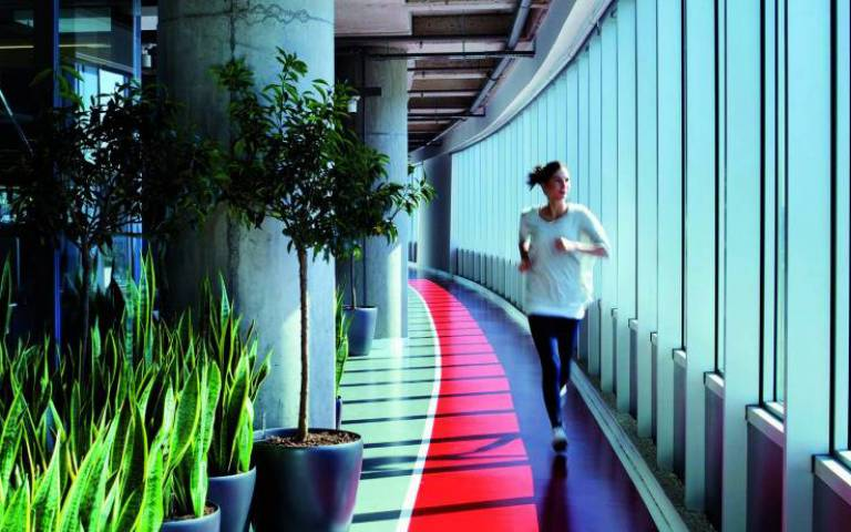 health wellbeing and workplace