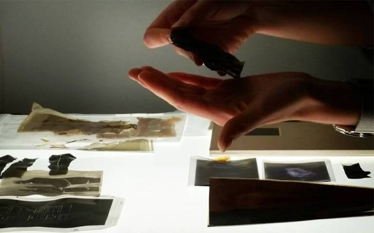 A person examining a heritage collections