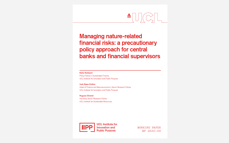 IIPP Working Paper 2020-09: Managing nature-related financial risks