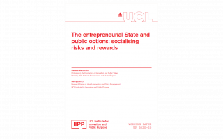 The entrepreneurial State and public options IIPP WP-2020-20