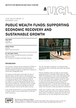 cover_final_iipp_policy_brief_11_public_wealth_funds_resized.png