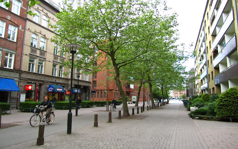 A pedestrianised town centre street with a row of trees and buildings on either side of the street