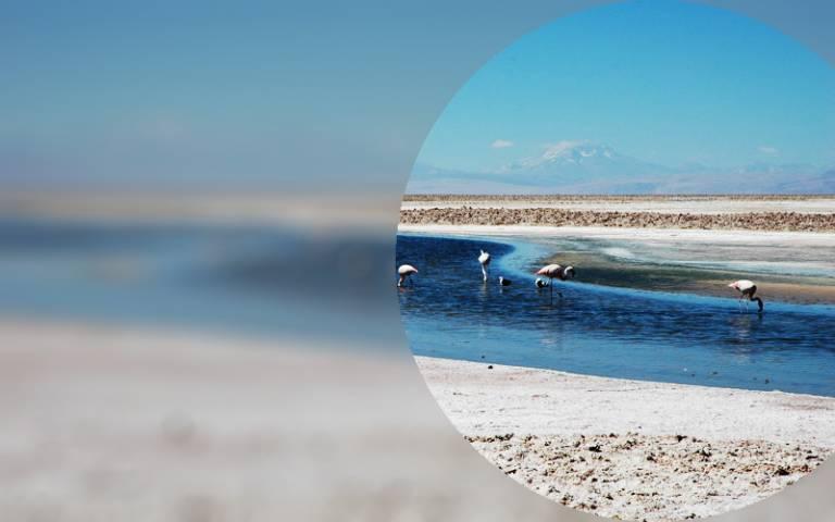 Chilean salt flats